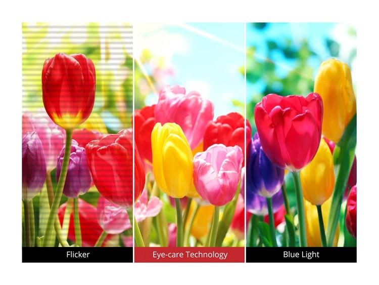 Màn hình LCD Viewsonic 23.8 VA2419-SMH