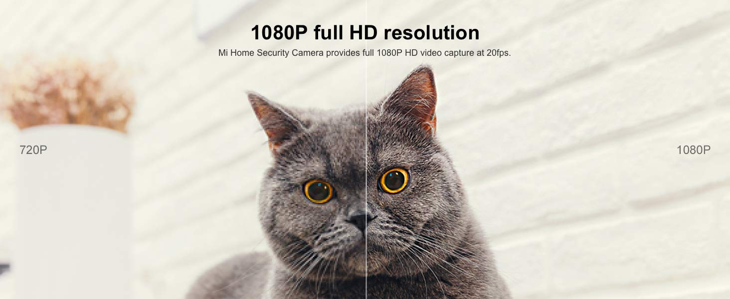 Camera XIAOMI MI HOME SECURITY BASIC 1080P