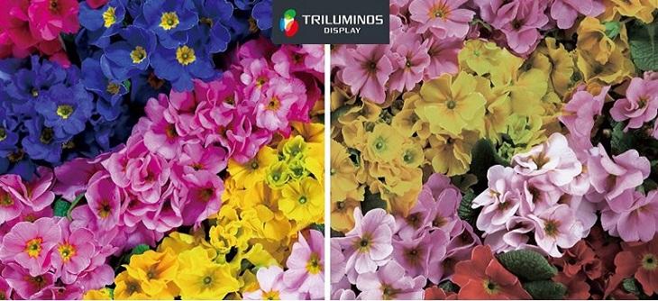 công nghệ TRILUMINOS đem tới dải màu rộng sống động chân thực