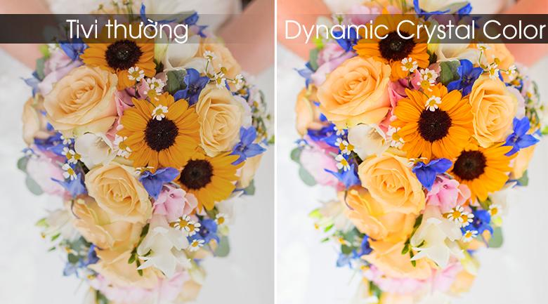 Dynamic Crystal Color đem tới hình ảnh gần gũi tự nhiên