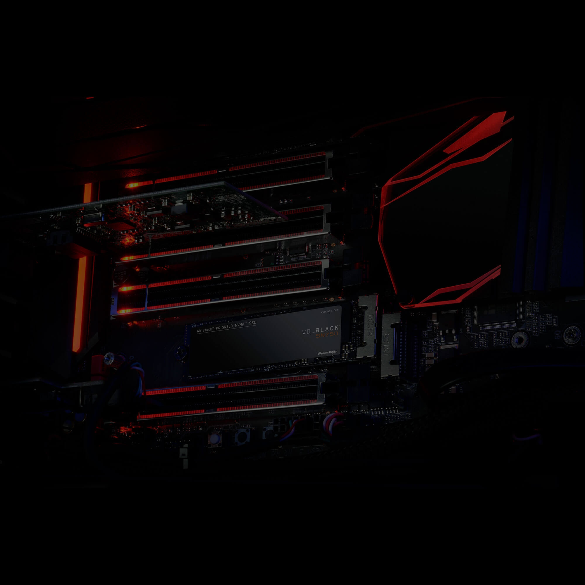 Ổ cứng SSD WD Black 250GB M.2 2280 NVMe PCIe (WDS250G3X0C)_2