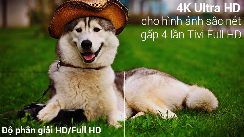độ phân giải UHD 4K đem tới hình ảnh chất lượng