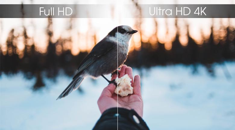 độ phân giải UHD 4K đem tới hình ảnh sắc nét vô cùng chân thực