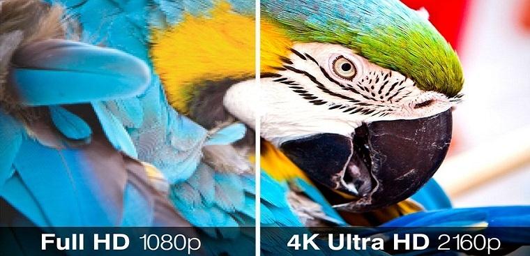 độ phân giải UHD 4K đem tới hình ảnh sắc nét sống động