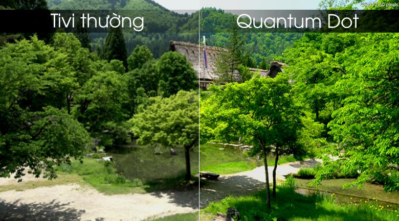 Quantum Dot đem tới hcaats lượng hình ảnh sắc nét gần gũi tự nhiên