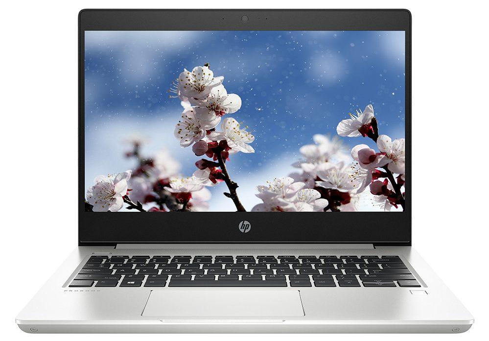 Laptop HP ProBook 430 G6-5YN22PA (i5-8265U) (Bạc)