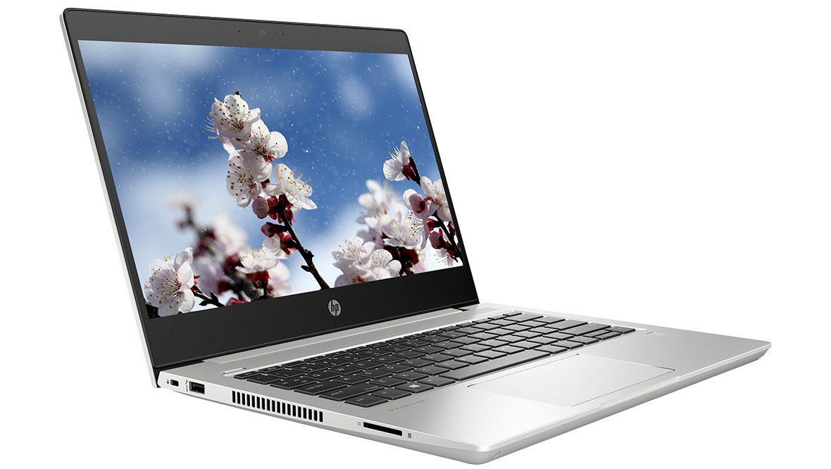 Laptop HP ProBook 430 G6-5YN22PA (i5-8265U) (Bạc) -2