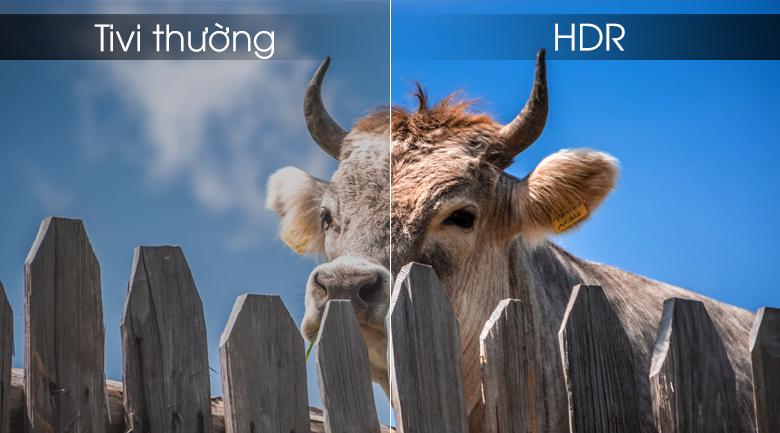 công nghệ HDR ứng dụng trên tivi sony làm tăng thêm độ tương phản và màu sắc cho hình ảnh
