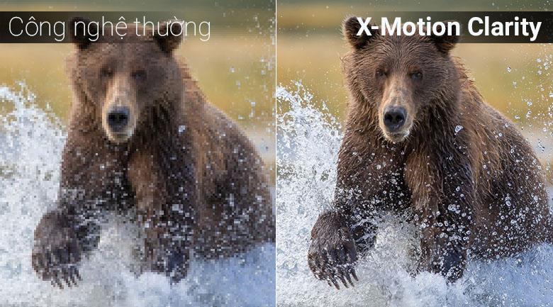 X-Motion Clarity đem tới trải nghiệm thú vị với người dùng