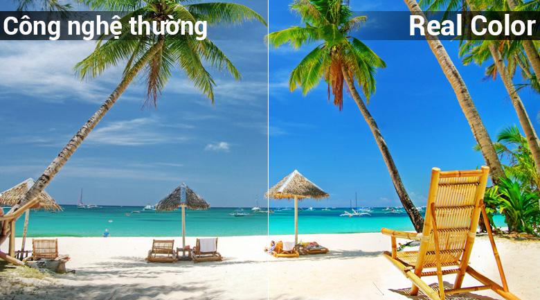 Công nghệ hình ảnh Real Color có khả năng tái tạo các dải màu hơn các dòng tivi thông thường đem tới cho người xem