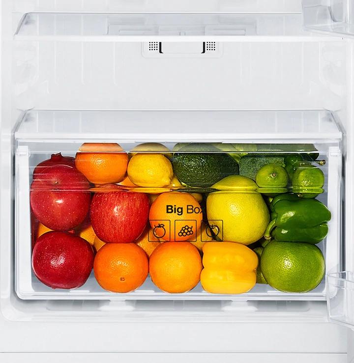 Tủ lạnh Samsung Inverter 208 lít RT19M300BGS-SV_6