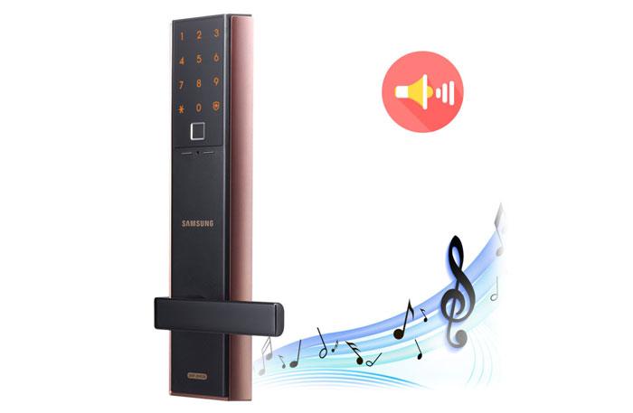 Samsung-SHP-DH538-volume
