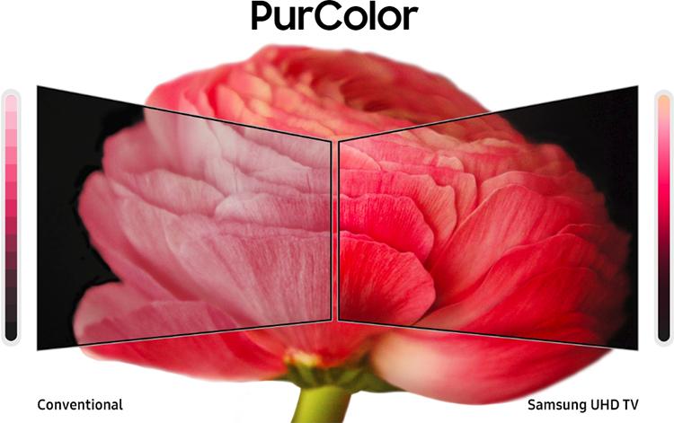 Công nghệ PurColor tái hiện dải màu sắc chân thực và tự nhiên