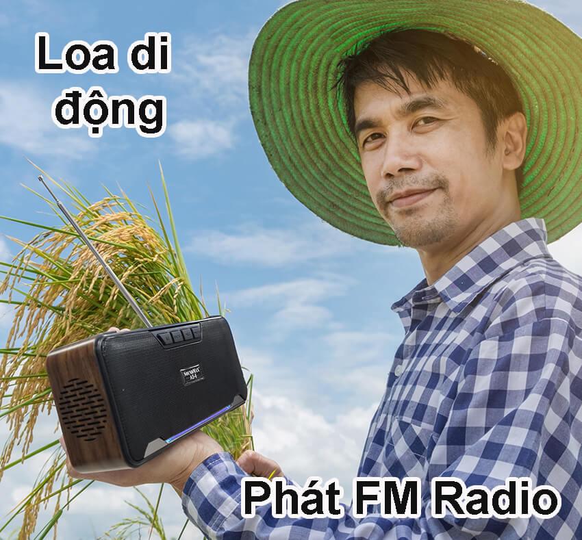 Loa-Bluetooth-SoundmaxAS-6