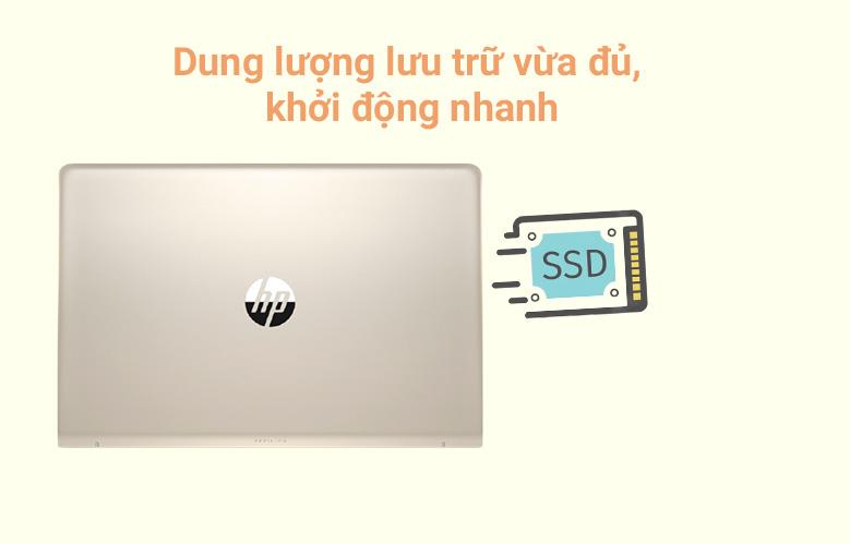 Laptop HP Pavilion 15-eg0007TX (2D9D5PA) (i7-1165G7) (Vàng) | Dung lượng lưu trữ vừa đủ