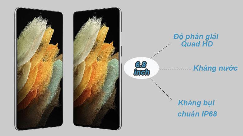 Samsung Galaxy S21 Ultra 5G (12+128GB) SM-G998BZSDXXV (Silver) | Độ phân giải Quad HD